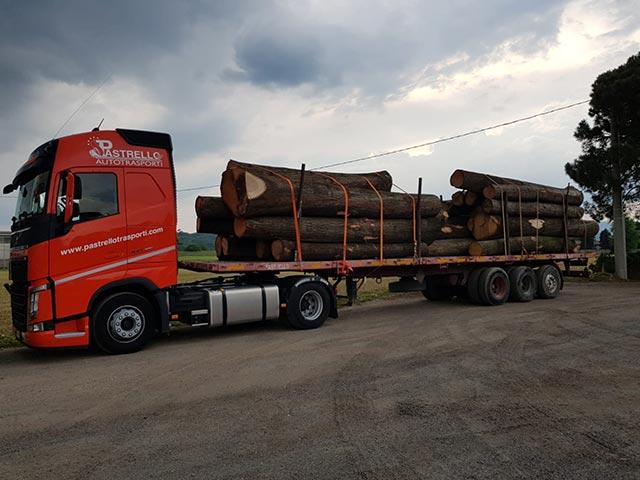 pastrello-traporti-veneto-puglia-trasporto-legname-tronchi
